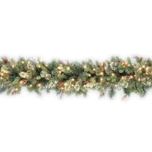 National Tree Company   9 x 12 Wintry Pine Garland with