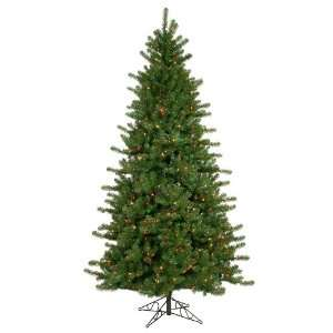 Lit Colorado Pine Christmas Tree   Multi Color Lights