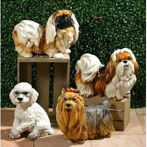 Intrada Italy Brown & White Shih tzu Dog Statue  Kitchen