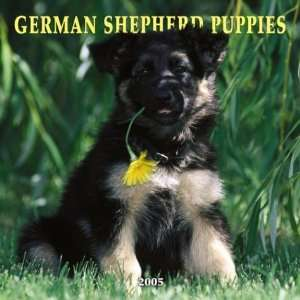 German Shepherd Puppies 2005 Wall Calendar (9780763175658