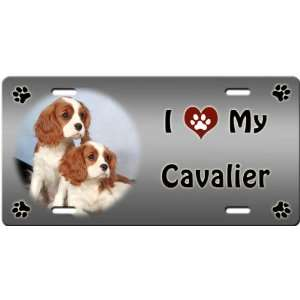 I Love My Cavalier King Charles Spaniel License Plate