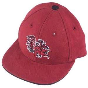 South Carolina Gamecocks Garnet Infant Hat  Sports