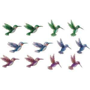 Refrigerator Fridge Magnet Collection Hummingbird Set Of
